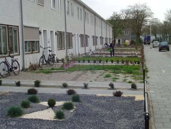 Huisboomfeest verhalen en observaties - Aangelegde tuin met kiezelstenen ...